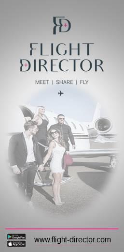 FLIGHT DIRECTOR VERTICAL
